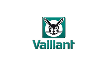 vaillant-group